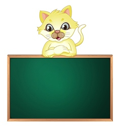 A yellow cat above the empty blackboard vector