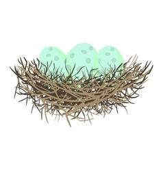 Green wild eggs in bird nest vector