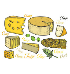 Hand drawn cheese vector