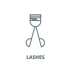 Lashes line icon linear concept outline vector