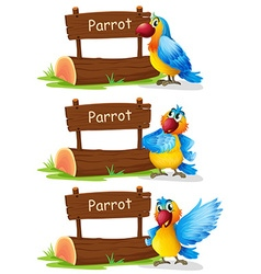 Parrot standing next to sign vector