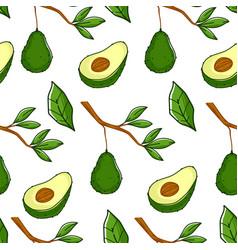 Ripe avocado plant growing on branch pattern vector