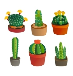 Cute cartoon cactus plant vector image vector image