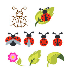 ladybug clipart set with green leaves and outline vector image