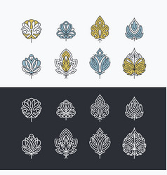 line and color lacy abstract leaves vector image vector image