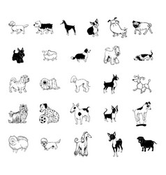 dog collection clipart vector image