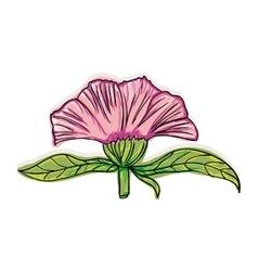 icon flower design vector image