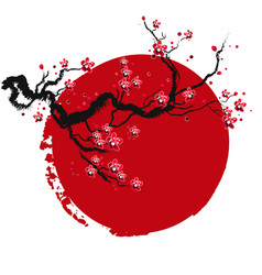 Sakura branch sunset red circle frame background v vector
