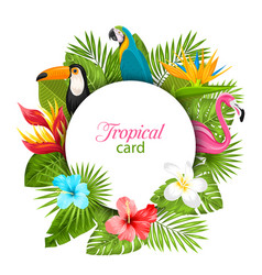 summer card with tropical plants hibiscus vector image