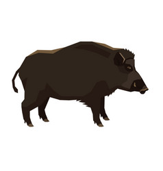 wild animals collection wild boar isolated object vector image