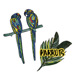 with parrots vector image