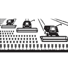 Combine harvesters gathering wheat vector image