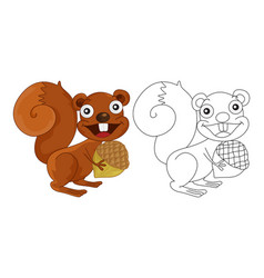 animal outline for squirrel vector image