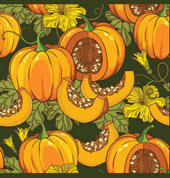 botanical seamless pattern with pumpkins flowers vector image