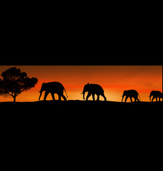 Elephants silhouette and tree in the savannah vector