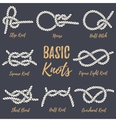 Set of nautical rope knots vector