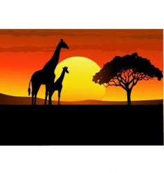 Africa giraffe sunset vector image