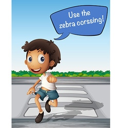 Boy crossing the road using zebra crossing vector