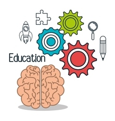 brain student school set elements design vector image