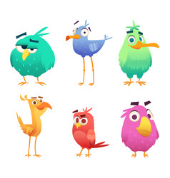 Cartoon funny birds faces cute animals colored vector