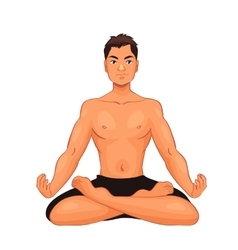 handsome young man in various poses of yoga vector image