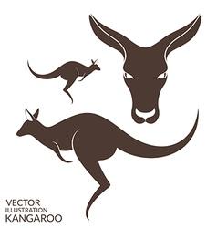 Kangaroo Isolated animals on white background vector image