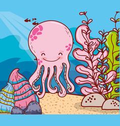 octopus animal with shells and seaweed plants vector image