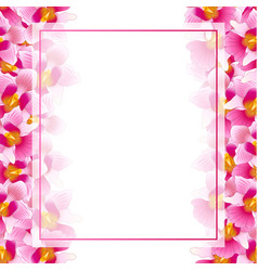 Pink vanda miss joaquim orchid banner card border vector