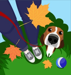 A guy his dog and autumn leaves vector image vector image
