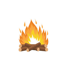 campfire with burning wood logs and flame cartoon vector image