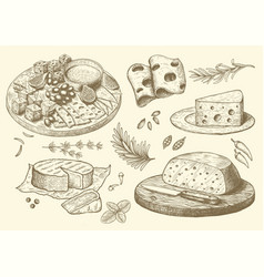 cheese collection hand drawn engraved graphic vector image