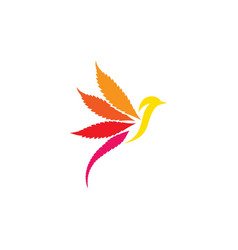 creative bird logo designs template vector image