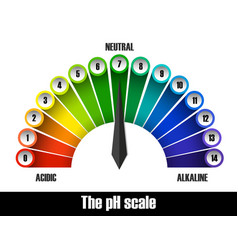 the ph scale chart vector image