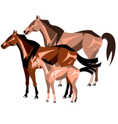 three horses standing isolated vector image