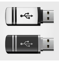 USB pen drives vector image