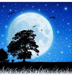 moon in night sky vector image