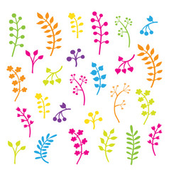 floral collection with leaves and flowers vector image