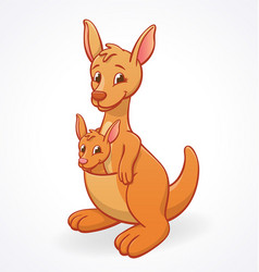 kangaroo mother with child joey in pouch vector image