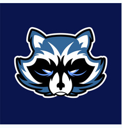 Raccoon logo badge for sport esport vector