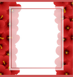 red hibiscus - rose of sharon banner card border vector image