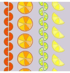 rows of citrus seamless pattern vector image