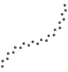 seamless texture a paw print trail on white vector image