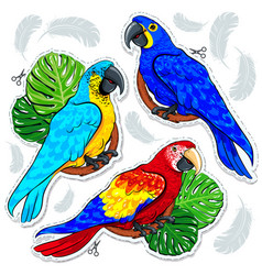 Stiker bright colored parrots palm leaves and vector