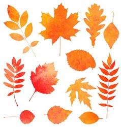 Watercolor collection beautiful orange autumn vector