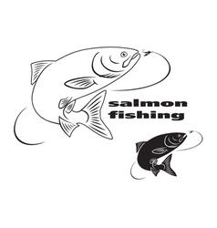salmon vector image vector image