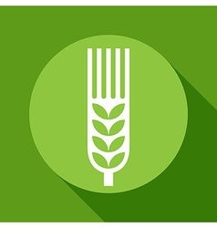 Wheat ear sign vector image vector image