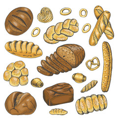 set of colored bakery organic food vector image vector image