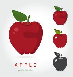 apples fruit vector image