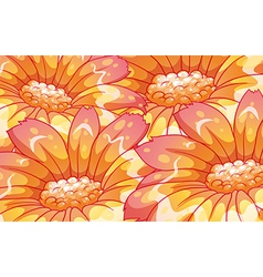 Beautiful orange flowers vector image