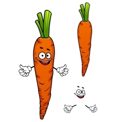 Colorful cartoon carrot vegetable character vector image